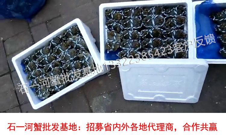 河蟹打包装箱